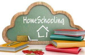 kurikulum homeschooling